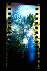 35mm Filmstrip Lens Flare holga 120mm film sprockets